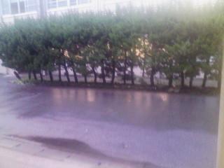傘喧嘩(2)_2009-11-17