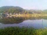 ハンテーンin深泥池_2009-11-08MB