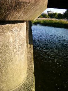 橋桁の横で_2009-06-28