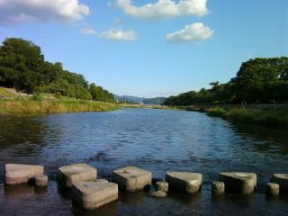渾身の飛び石の写真_2009-06-28