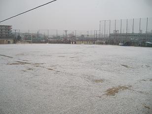 Snow Ground_2009-01-26