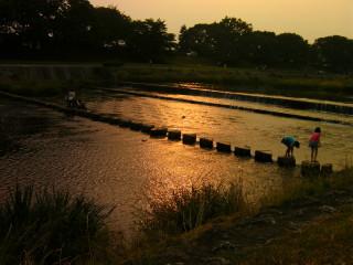 夕焼けの飛び石_2009-06-13