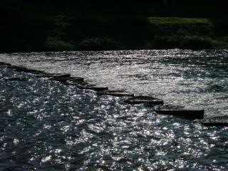 水を被る飛び石_2009-08-03