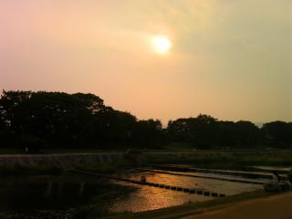 太陽と飛び石_2009-06-13