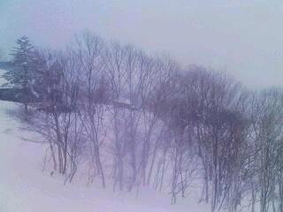 ゴンドラからの眺め_02_2009-01-29