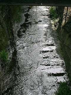 上賀茂の水路_2009-04-03