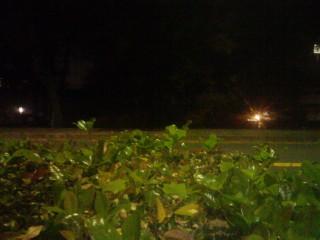 夜生(2)_2009-11-29