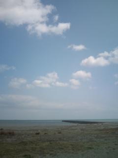 太平洋を臨む