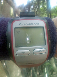 forerunner305_map