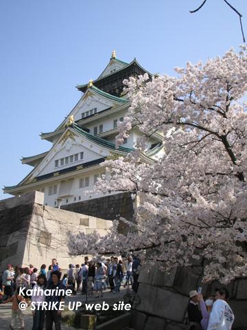 お花見客でいっぱいの大阪城~!!!