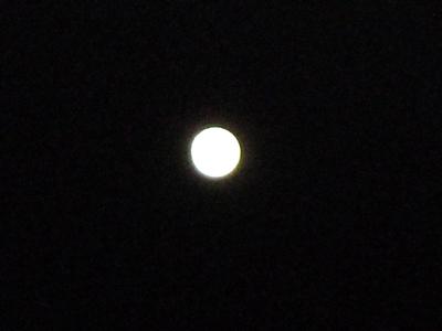 moon000.jpg