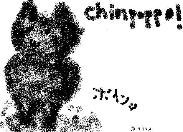 chinpo2.jpg