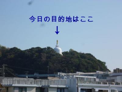 006_20111123132308.jpg