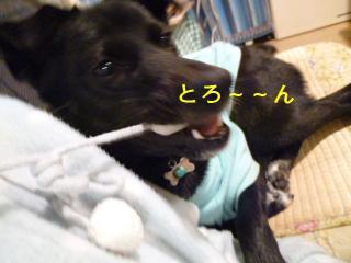 010_20111109161714.jpg