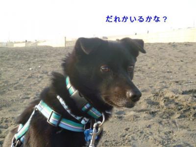 020_20120306211211.jpg