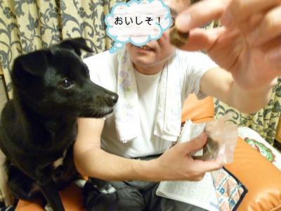 100_20120215132627.jpg