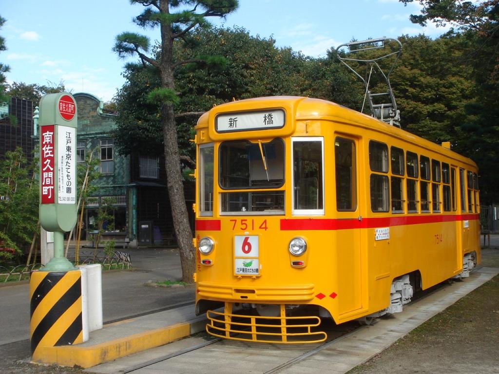 DSC00733.jpg