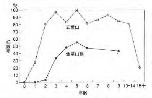 図9 五葉山と金華山(過密状態)における年齢別妊娠率