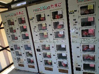 miyanishi.jpg