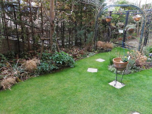 冬枯れと緑の芝の庭