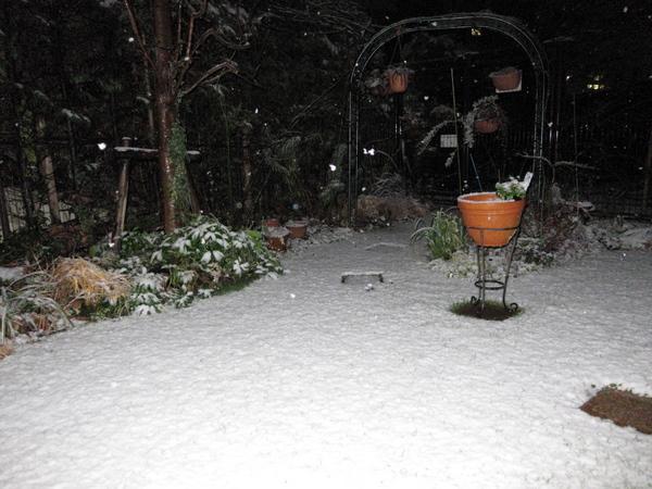 夜更け過ぎの雪