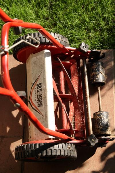 3ヶ月ぶりの芝刈り機