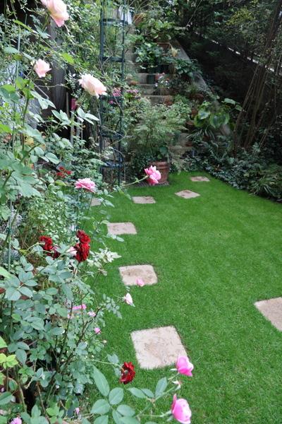 芝庭とバラ