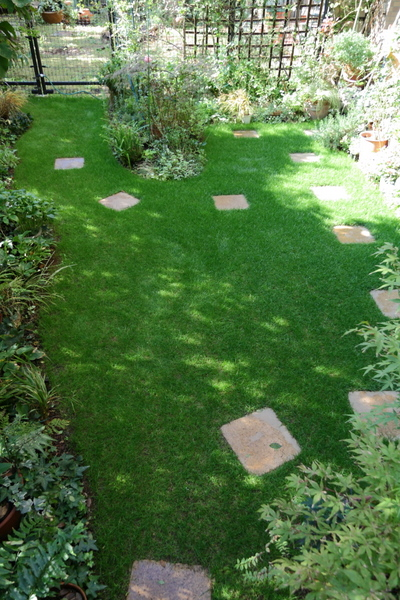 今日の芝庭3