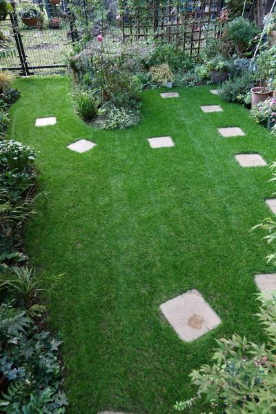 今日の芝庭2