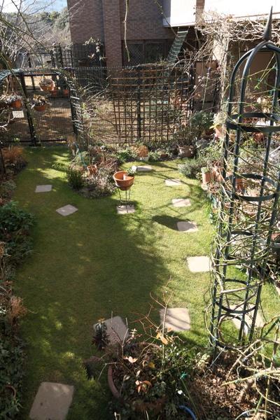 今日の芝庭