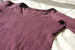 Tシャツハックルベリー