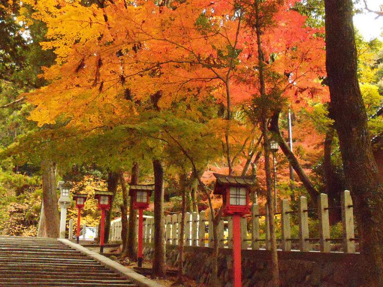 Kyoto 2.1