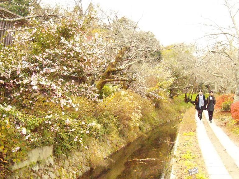 Kyoto 2.2