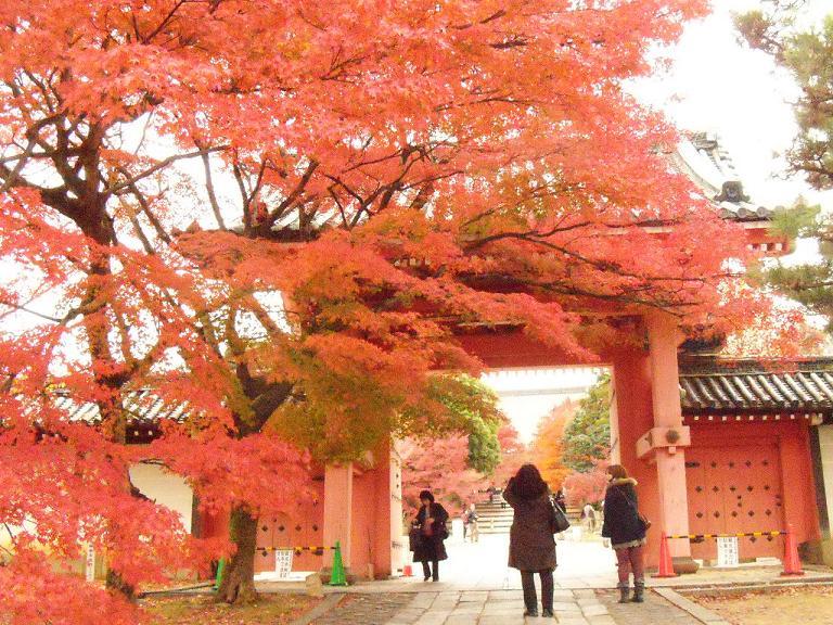 Kyoto2日目5
