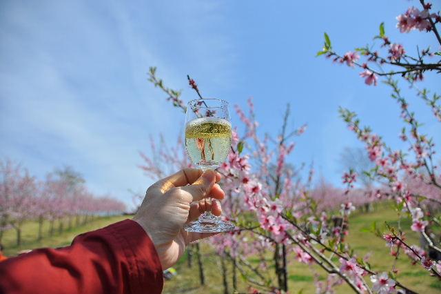 アーモンドスパークリングワイン
