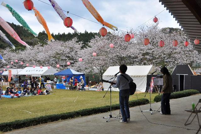 獅子ヶ鼻公園桜まつり12
