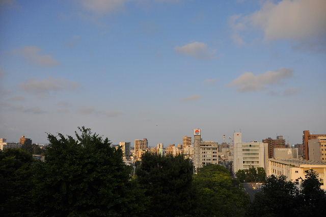 浜松城景色