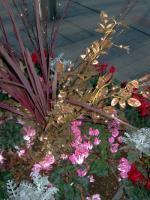 ヒスミニセール花①