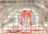 8de67504-s.jpg