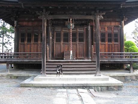古~いお寺