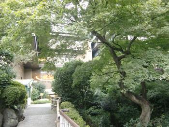 椿山荘ー1