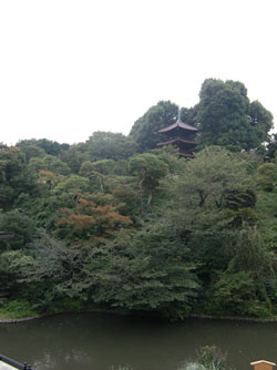 椿山荘-2