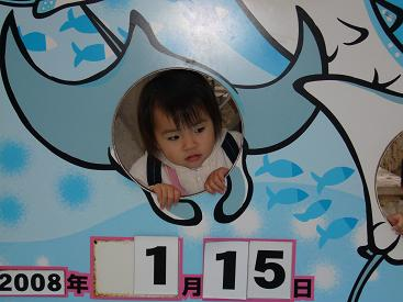 美ら海水族館28