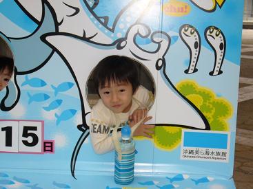 美ら海水族館29