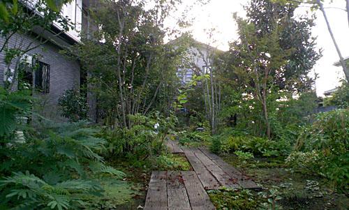 前庭ですが北を向いているので少し暗いかな。枕木の通路がすてきでしょ(^-^)