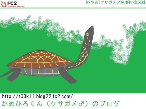 かめひろくん壁紙1024×768_convert_20111207183200