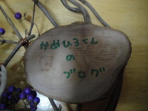 DSC04949_convert_20111129180350.jpg