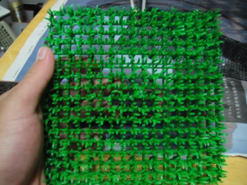 DSC04951_convert_20111130190416.jpg