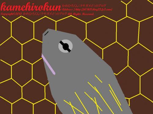 kamehirokunbybrother_convert_20120304200313.jpg