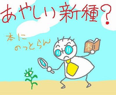 s-090501hatuga.jpg